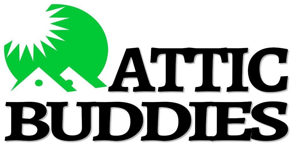 Attic Buddies